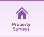 icon-01-property-surverys